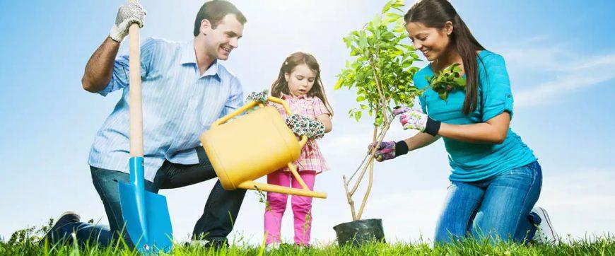 aile-danismanligi-terapisi